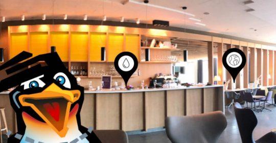 Operation Penguin for Nordic Choice Hotels: Et spill om bærekraft